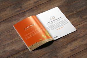 Content Coms - Climate Disclosure 2019 - Mockup 2