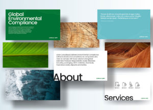 Lorax EPI - Presentation Design Mockup